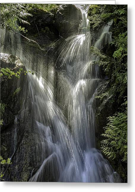 Spring Falls Greeting Card by Gary Neiss