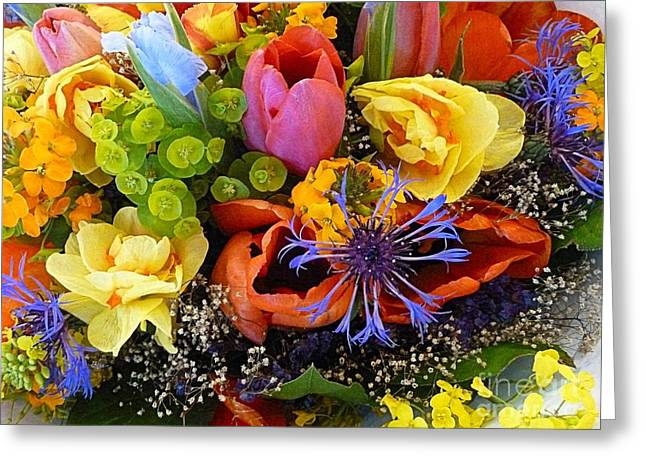 Spring Fever Greeting Card by Lauren Leigh Hunter Fine Art Photography