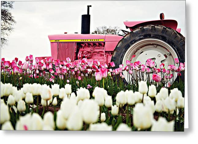 Spring Fever  Greeting Card by Michelle Bauer