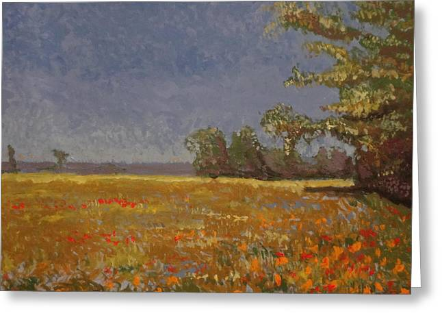 Spring Field Greeting Card by Paul Benson