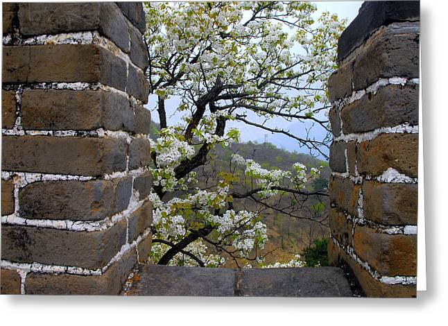 Spring Flowers At The Great Wall Greeting Card