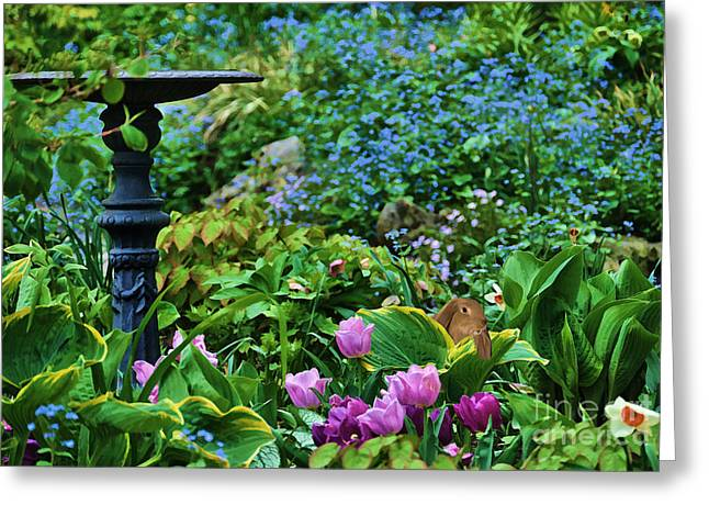 Spring Garden  Greeting Card by Elaine Manley