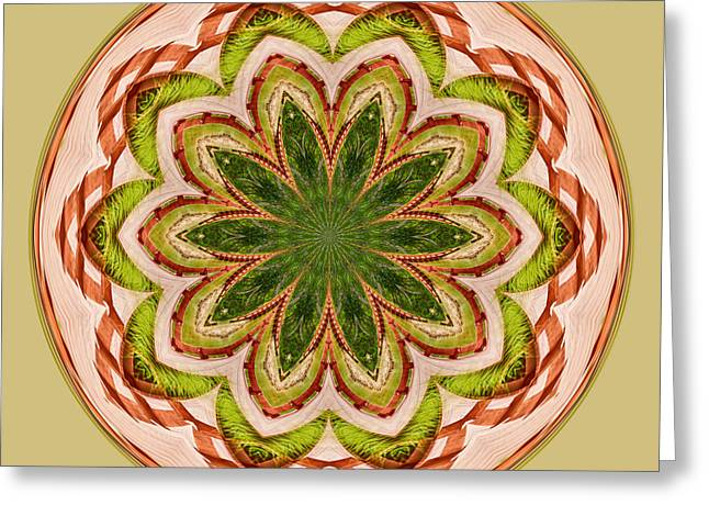 Spring Grasses Mandala Greeting Card by Bill Barber