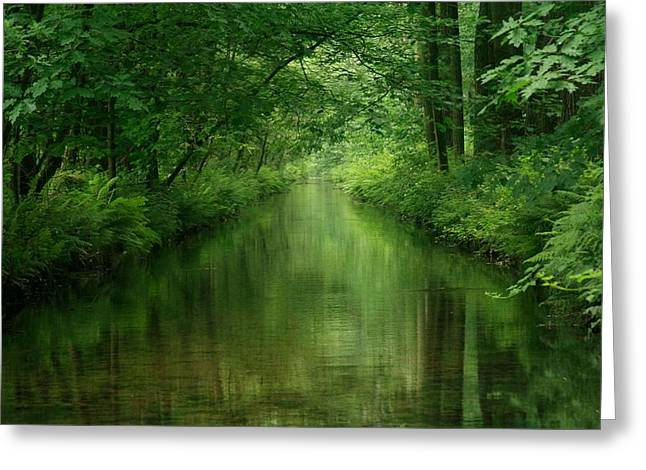 Spring Green Greeting Card by Gigi Embrechts