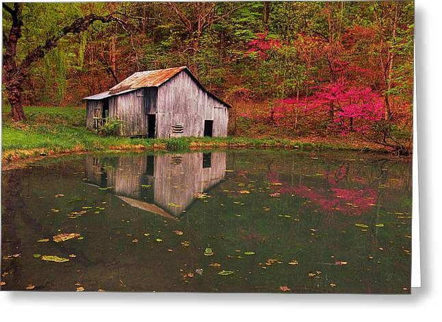 Spring Has Come To The Appalachia Greeting Card