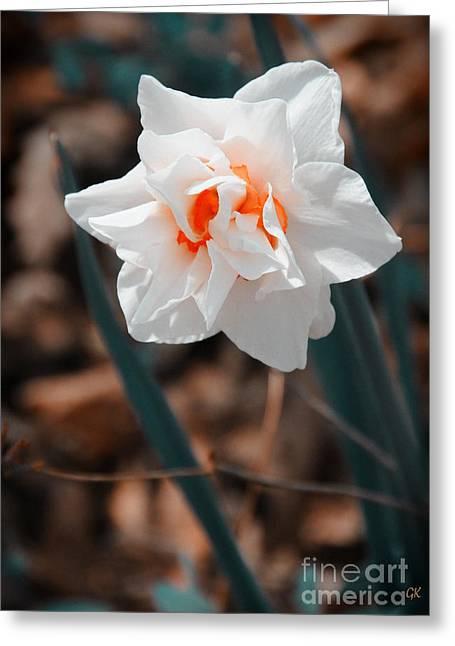 Spring Has Sprung Greeting Card by Gerlinde Keating - Galleria GK Keating Associates Inc