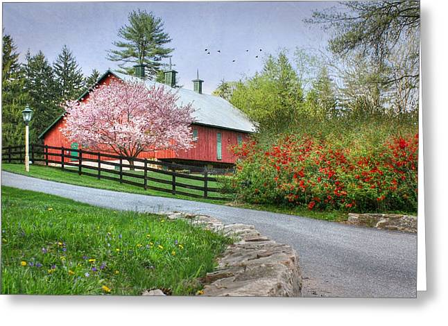 Spring In Clarks Valley Greeting Card by Lori Deiter
