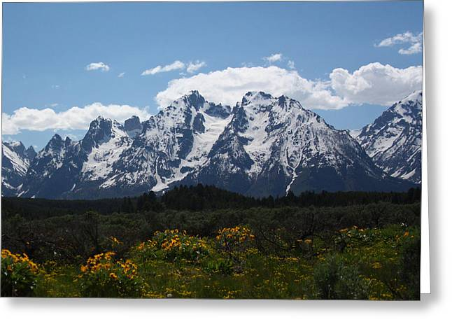 Spring In Grand Tetons National Park Greeting Card