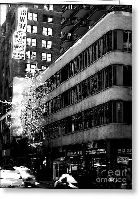 Spring In Manhattan Greeting Card by James Aiken