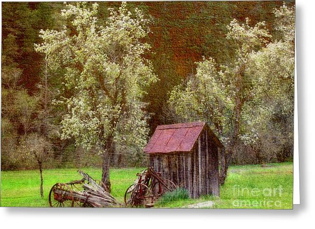 Spring In Old Ranch Greeting Card by Irina Hays