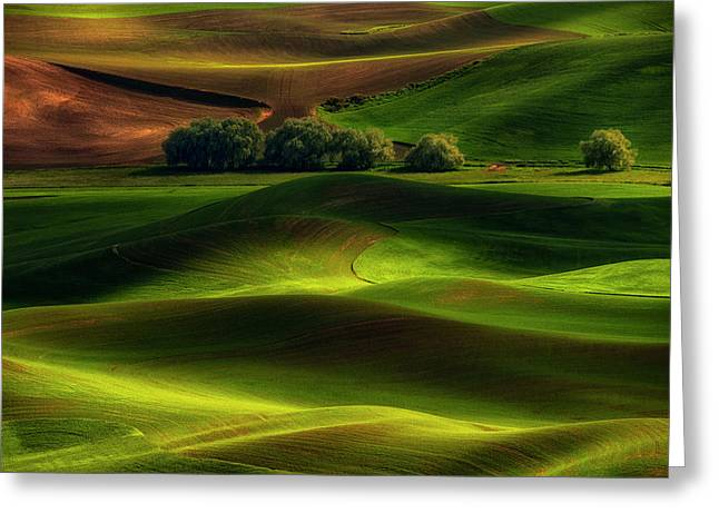 Spring In The Palouse Greeting Card