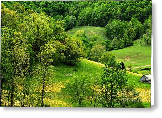 Spring In West Virginia Greeting Card by Thomas R Fletcher