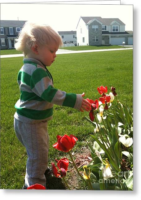 Spring Innocence Greeting Card