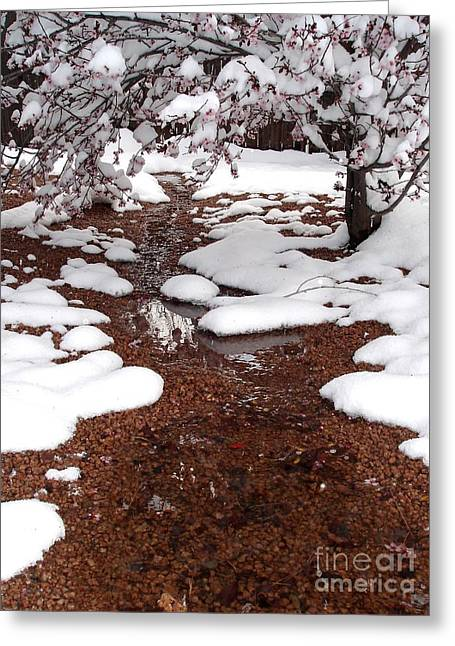Greeting Card featuring the photograph Spring Into Winter by Kerri Mortenson