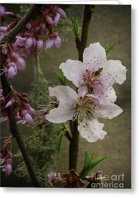 Greeting Card featuring the photograph Spring Is Here by Lori Mellen-Pagliaro