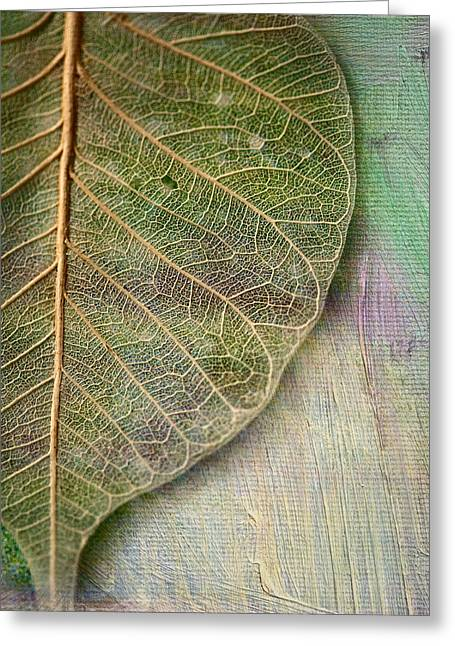 Spring Leaf Greeting Card