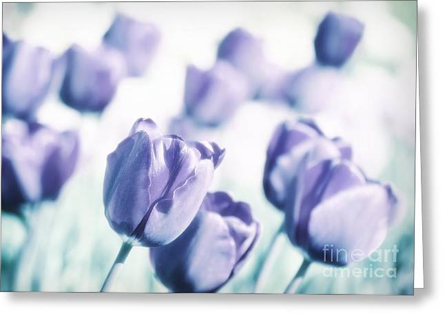 Spring Love II Greeting Card by Angela Doelling AD DESIGN Photo and PhotoArt