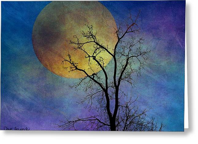 Spring Moon Greeting Card by Dave Hrusecky