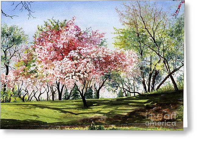 Spring Morning Greeting Card by Barbara Jewell