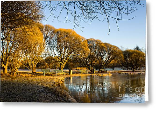 Spring Morning In The Park Greeting Card by Ismo Raisanen