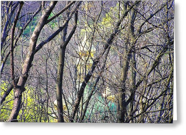 Spring Greeting Card by Oleg Zavarzin