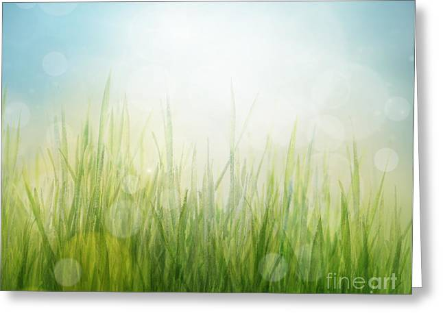 Spring Or Summer Abstract Season Nature Background  Greeting Card by Mythja  Photography