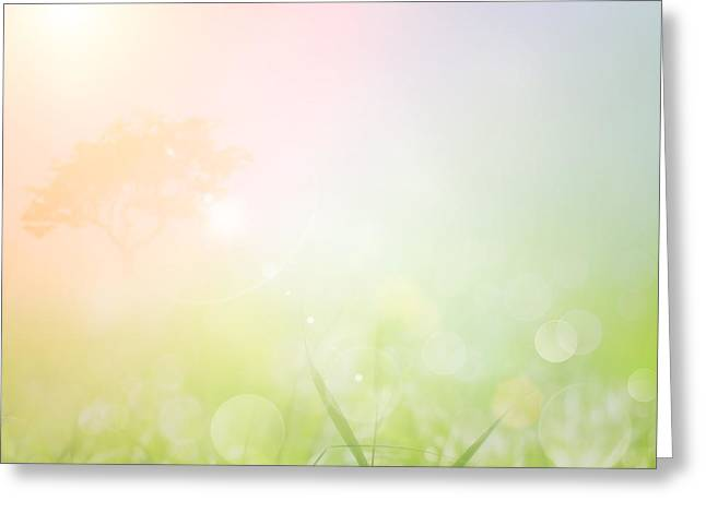 Spring Or Summer Nature Sunset Background Greeting Card