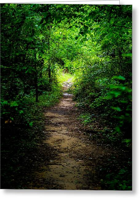 Spring Path To The Light Greeting Card by Shelby  Young