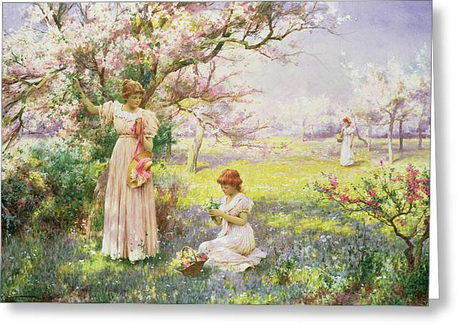 Spring   Picking Flowers Greeting Card by Alfred Augustus I Glendenning
