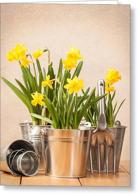Spring Planting Greeting Card by Amanda Elwell