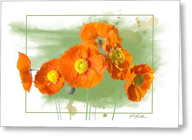 Spring Poppy Greeting Card