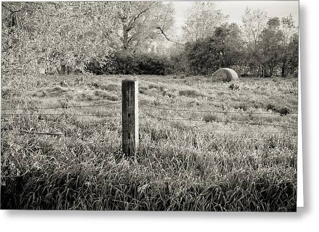 Spring Post And Bale In Black N White Greeting Card by Tracy Salava