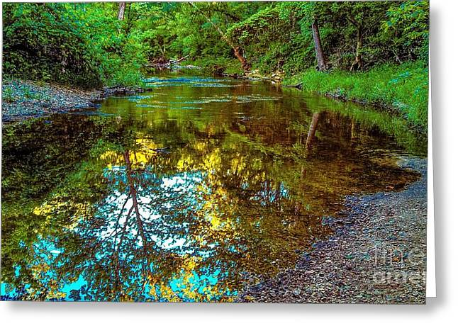 Spring Reflection  Greeting Card by Peggy Franz