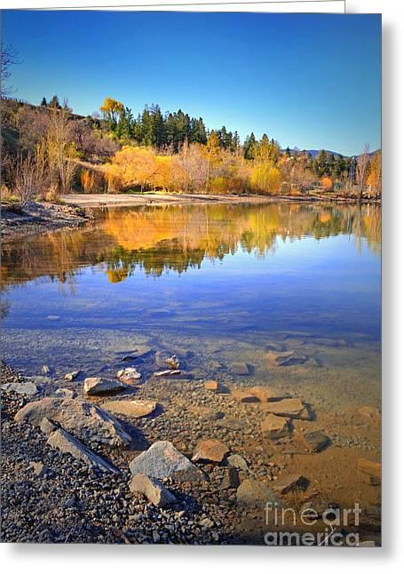 Spring Reflections Greeting Card by Tara Turner