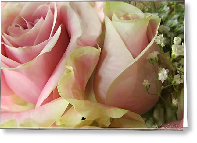 Spring Romance Pink Roses Greeting Card by Danielle  Parent