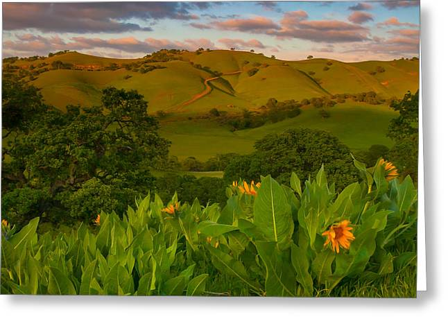 Spring Scene At Round Valley Greeting Card