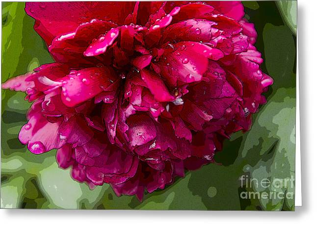 Spring Shower Peony 2 Greeting Card