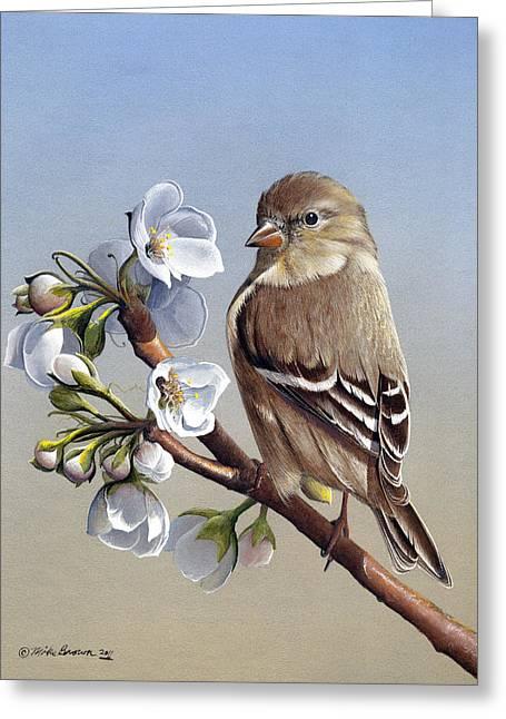 Spring Splendor Greeting Card
