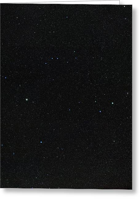 Spring Stars Without Light Pollution Greeting Card by Eckhard Slawik