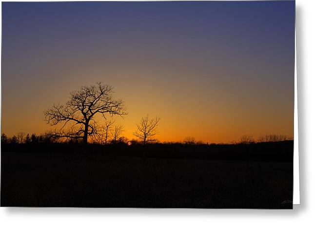 Spring Sunset Pops Through Trees Greeting Card