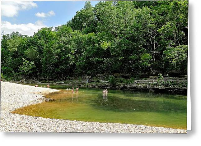 Spring Swin Greeting Card by Cindy Croal