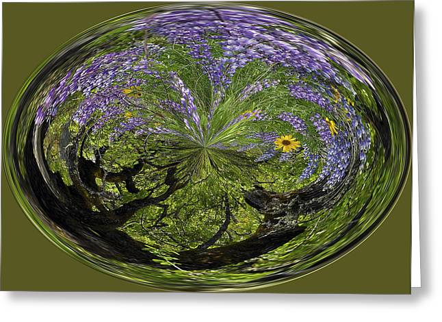 Spring Swirl Greeting Card by Jean Noren