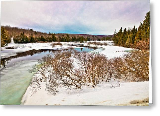 Spring Thaw At The Green Bridge Greeting Card by David Patterson