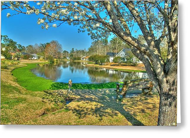 Spring Time Greeting Card by Ed Roberts