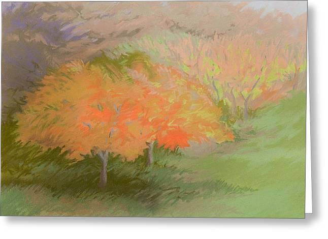 Spring Trees Greeting Card by Bruce Richardson