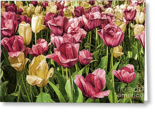 Spring Tulips Greeting Card by Linda Blair
