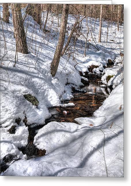 Spring Water Greeting Card