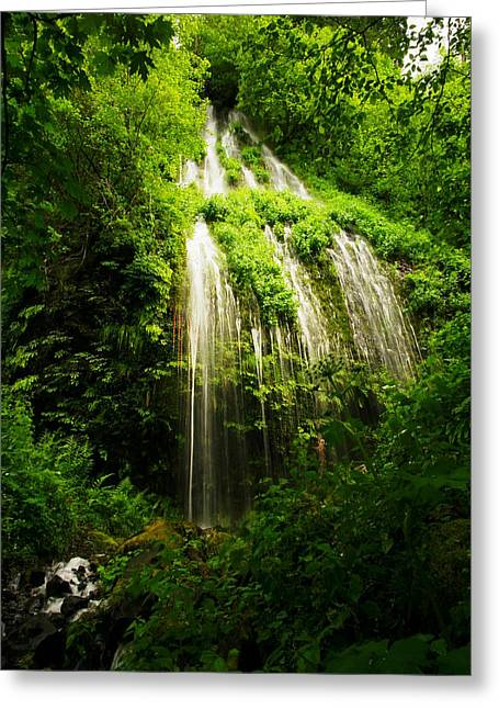 Spring Waterfall Greeting Card by Jeff Swan