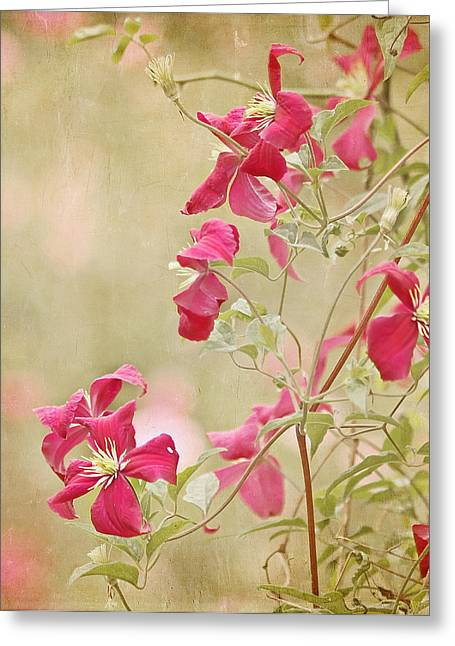 Spring Whisper Greeting Card by Kim Hojnacki
