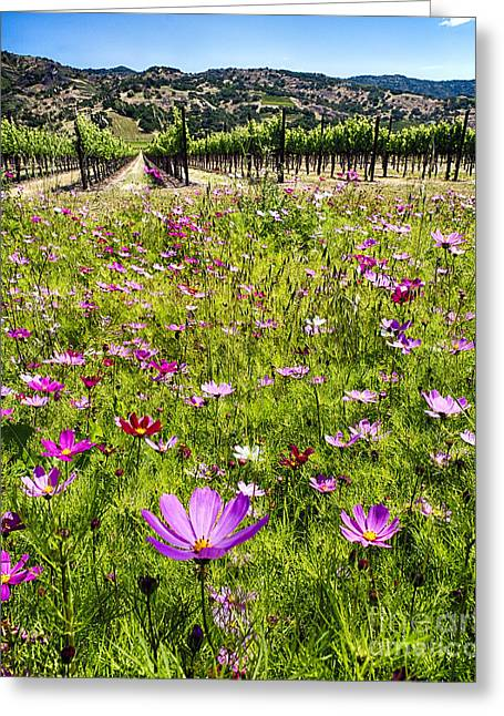 Spring Wildflowers Of Napa Valley Greeting Card by George Oze